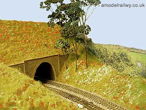 crewkerne tunnel - east